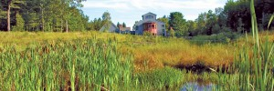 Doyle-Con-view-across-wet-meadowSlidenew