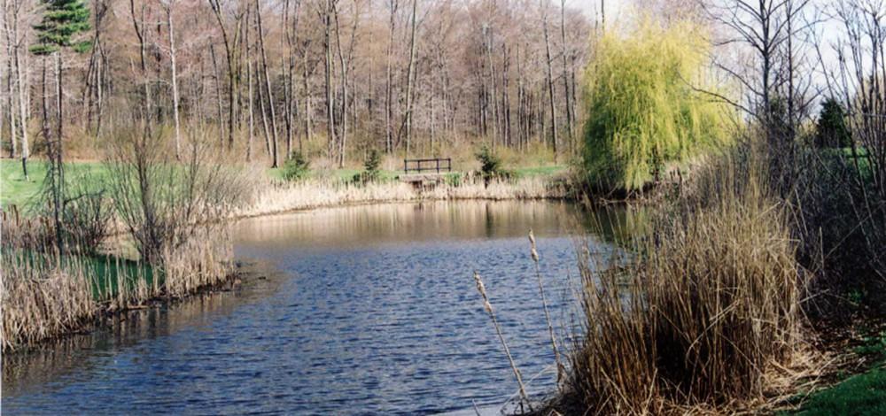 cedar-hill-pond-1_16x10