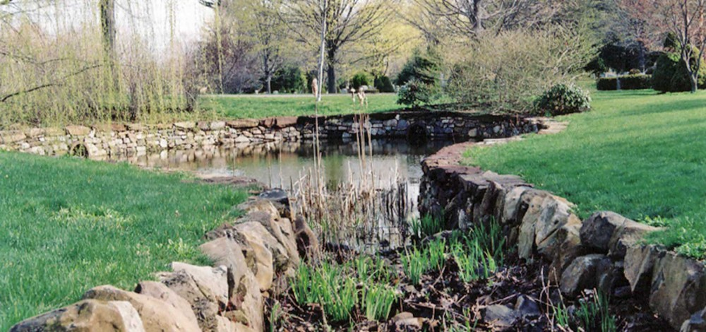cedar-hill-pond-4_16x10