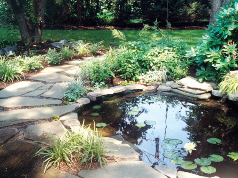 Projects verdant landscape architecture for Koi pond zoning